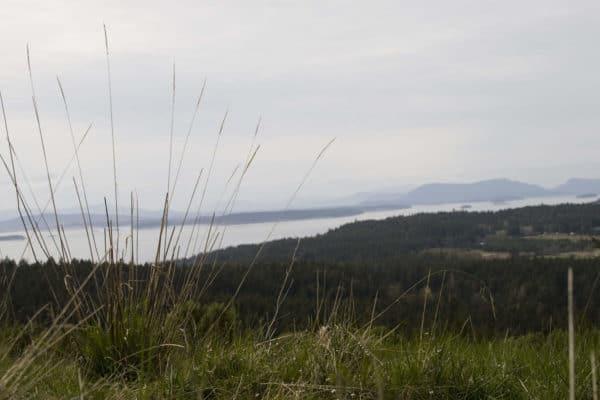09 Cabin on San Juan Island 2