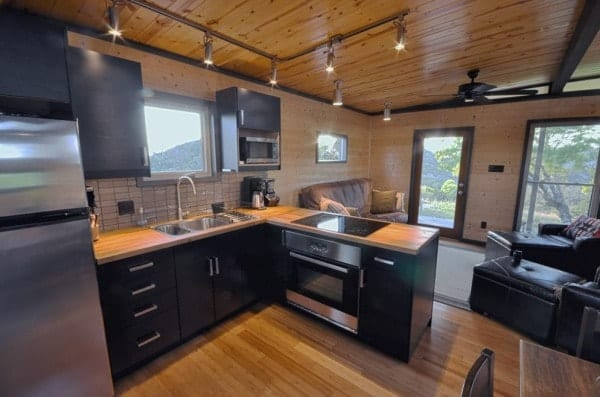Modern 500 sq ft cabin makes the most of every square inch for Small house 500 square feet