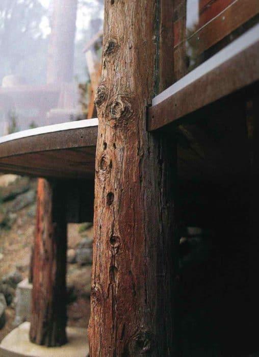 Lautner_3_www.richardolsen.org_