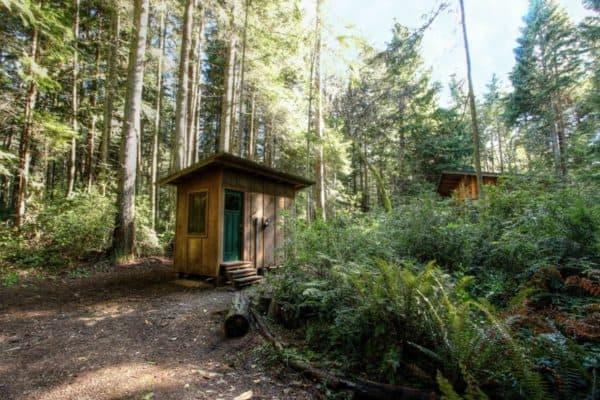 vashon-cabin-7