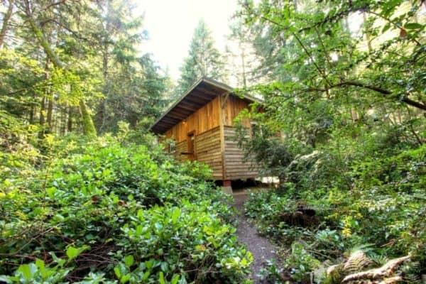 vashon-cabin-8
