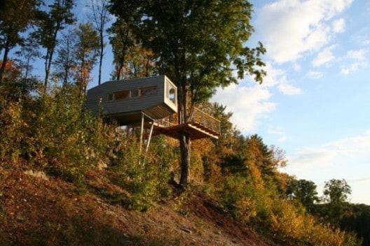 Whimsical Tree House 4