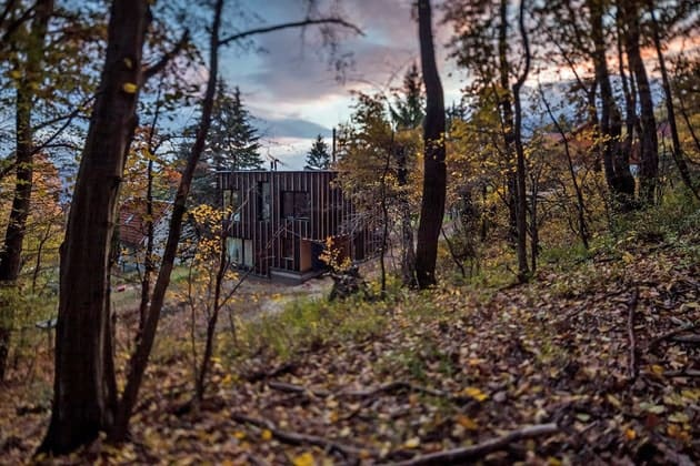 timber-cabin-built-two-days-3-approach-thumb-630xauto-32885