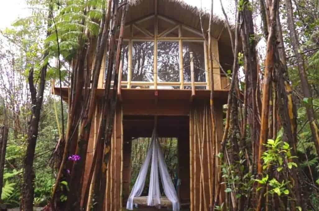 Tiny House in Hawaii