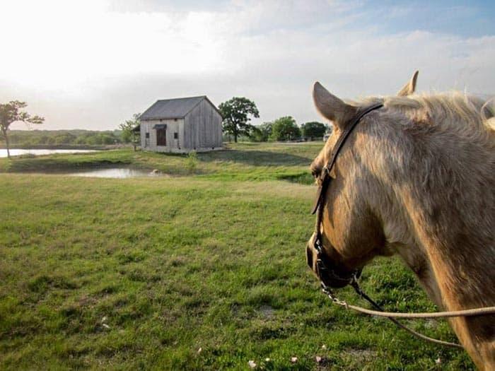 mckinney-barn-house-3