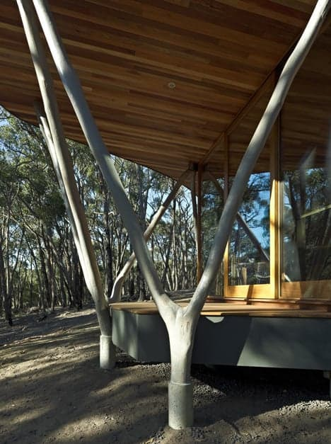 dezeen_Trunk-House-by-Paul-Morgan-Architects_5