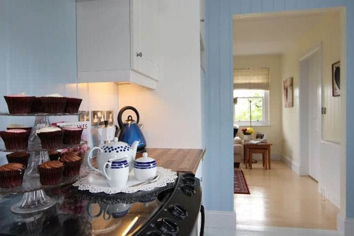 blue-compact-cottage-14