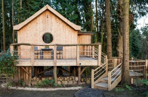 Bird-House-TreeHouse-in-the-Woods-of-Fordscroft-Farm-in-Somerset-England-001-600x393