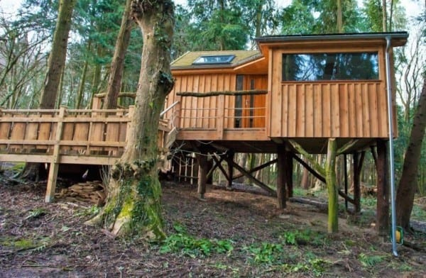 Bird-House-TreeHouse-in-the-Woods-of-Fordscroft-Farm-in-Somerset-England-0015-600x392