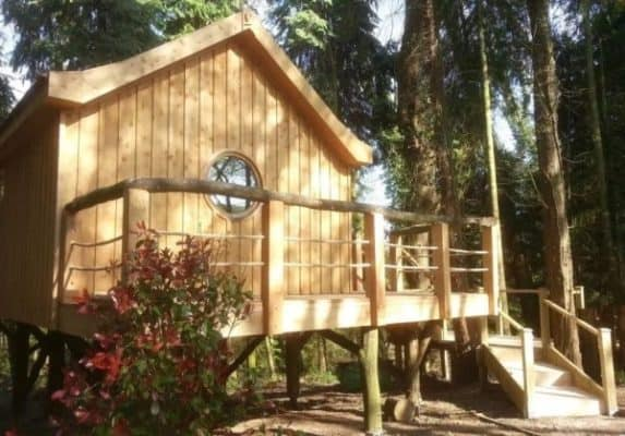 Bird-House-TreeHouse-in-the-Woods-of-Fordscroft-Farm-in-Somerset-England-0016-600x419