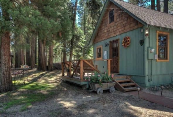 Wildflower Cabin 2