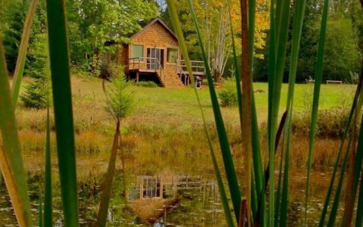 Tiny Pond Cottage 1