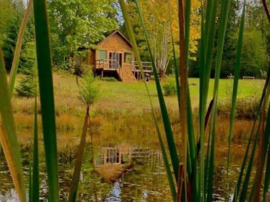 Tiny Pond Cottage 1