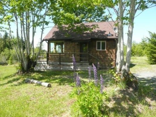Tiny Pond Cottage 7