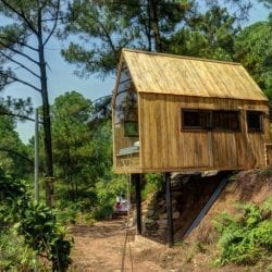 A glass walled cabin built on stilts for beautiful forest views